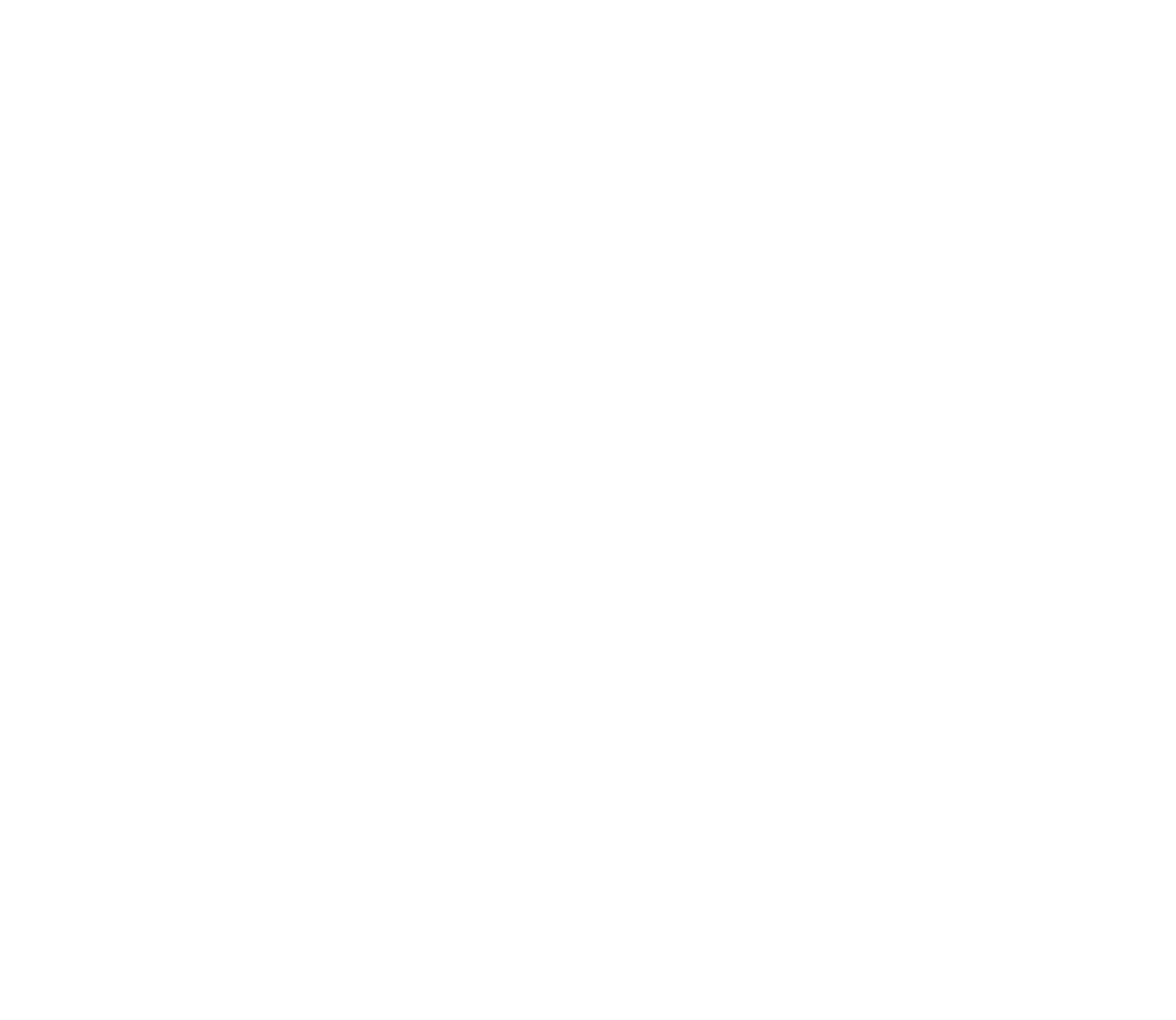 Brain Shoppe logo